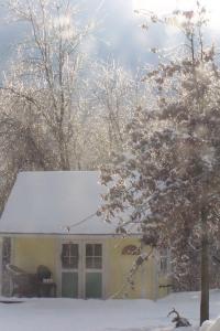 winter-2009-009